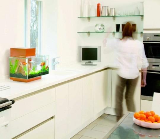 Аквариум на кухне